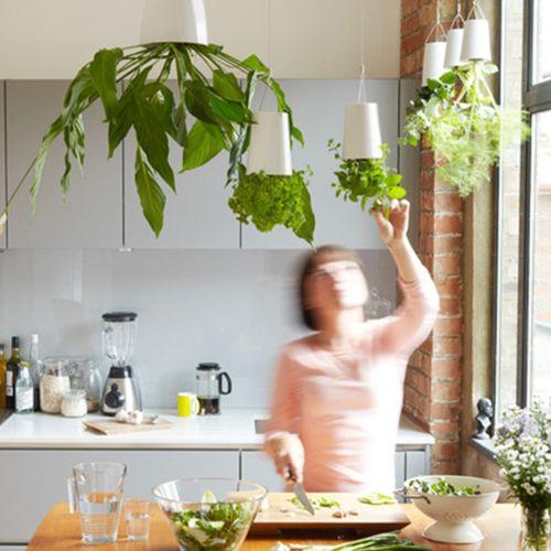Sale On Hanging Plastic Flower Pots Garden Sky Planter Upside Down