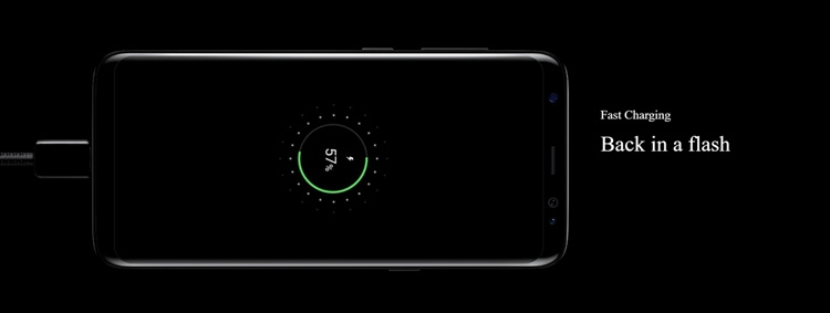Samsung Galaxy S8+ Battery
