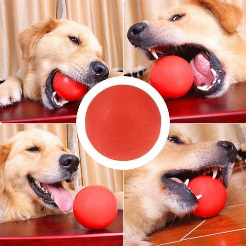 Solid Rubber Ball Interactive Toy Pet Dog Training Chew Play Bite Fetch Toys M