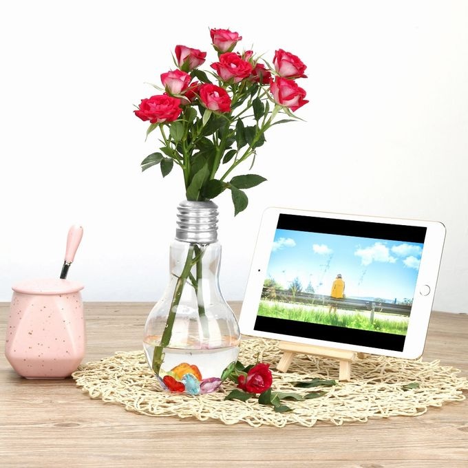 Clear Light Bulb Shape Stand Plant Flower Vase Hydroponic Container Bottle SL –  مصر