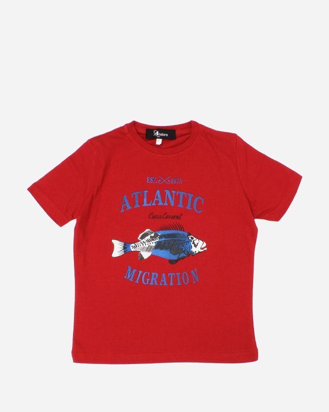 Andora 'ATLANTIC'' Printed T-Shirt - Red