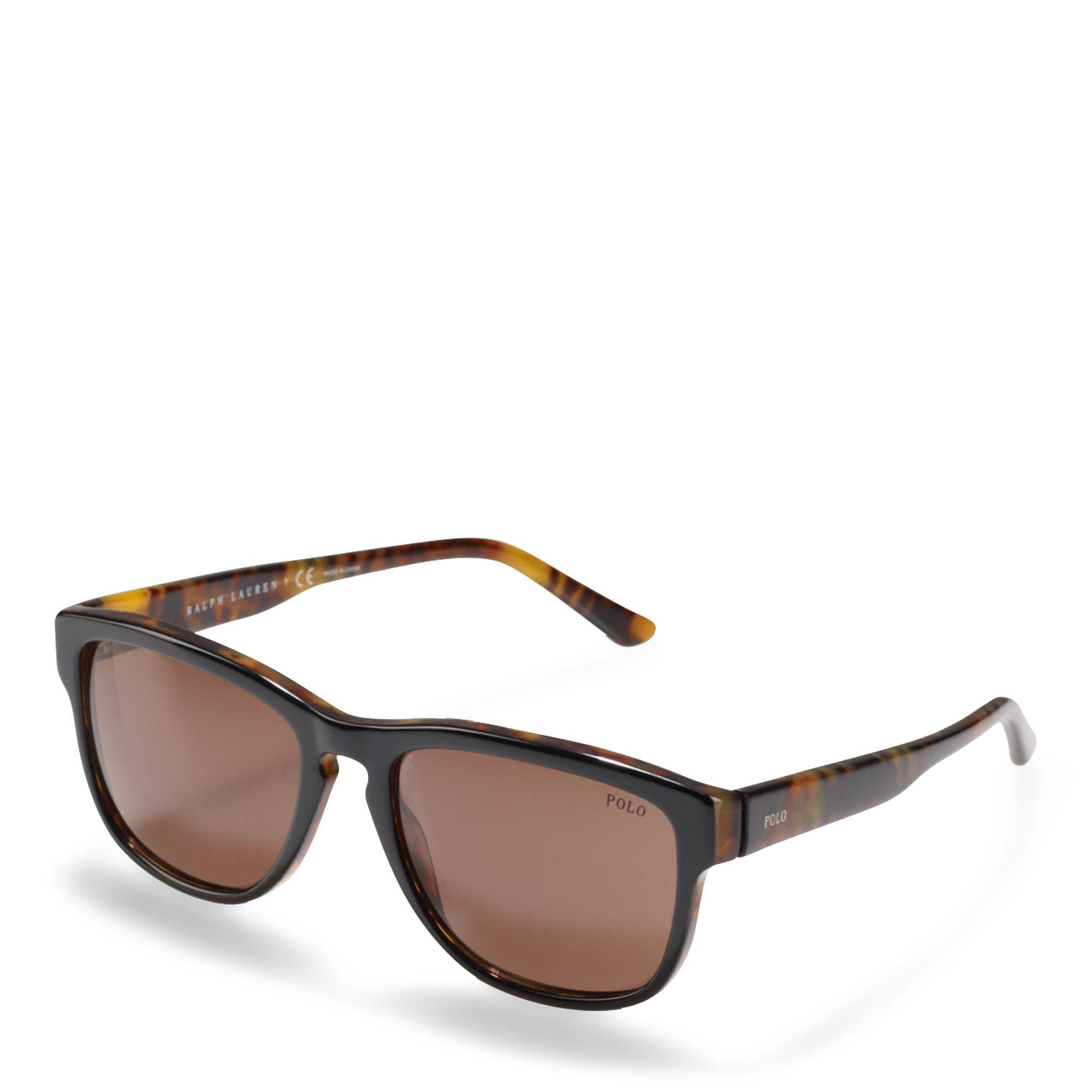 9ecdd79bddc8 Polo Ralph Lauren Retro Sunglasses Price in Egypt | Jumia ...