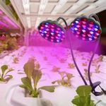 LED Grow Light piante Plant Growing Lamps Smart Timing Switch Dimmable Dual Head Lights for Seedlings Lighting for Flower Greenhouses