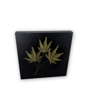 Creation 811008 Leather Wall Art