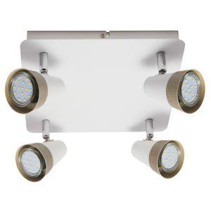 GU10 Ceiling Light