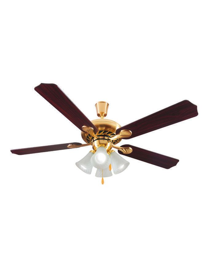 Fresh Pasha Ceiling Fan